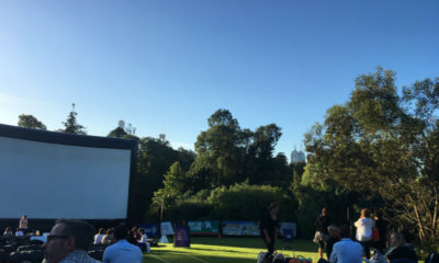 moonlight cinema - picnic in the gardens - jasper jones