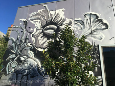 amazing street art of elephant face and flower with greenery in the sunshine