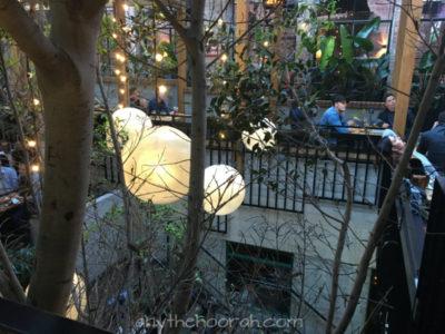 lights, leaves, beer garden