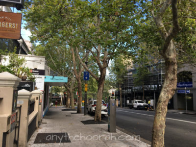 sydney streetscape in darlinghurst