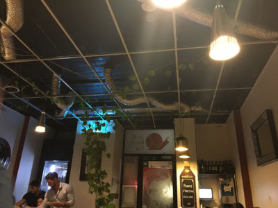 interior of french restaurant with plants and wine in footscray