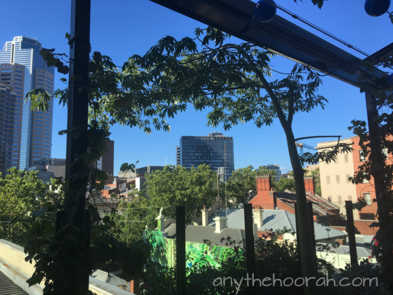 view over the city buildings and trees in the sunshine from loop bar