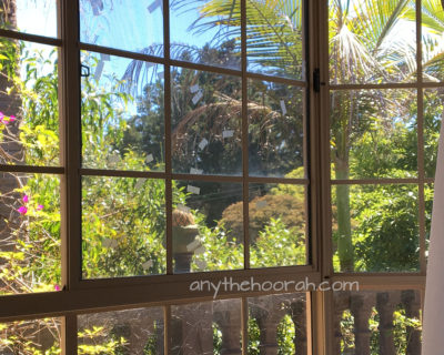 view to palm trees, bougainvillea and lush plants in the sunshine over a balcony