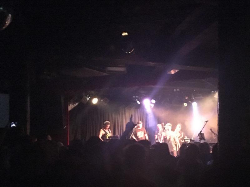 salmonella dub on stage